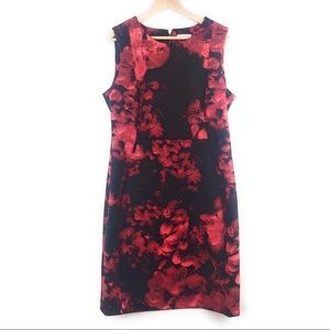Calvin Klein Black and Red Floral Sheath Dress 16